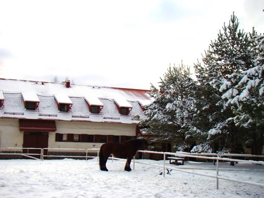 DSC00903a 640x480 Ośrodek agroturystyczny Hajduki – galeria zdjęć: obóz zimowy 2011