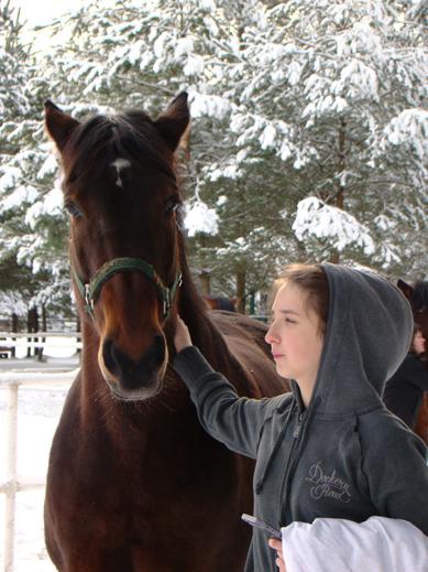 DSC00911a Ośrodek agroturystyczny Hajduki – galeria zdjęć: obóz zimowy 2011