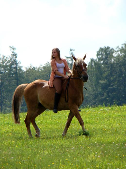 DSC04090 Letni obóz jeździecki 2011