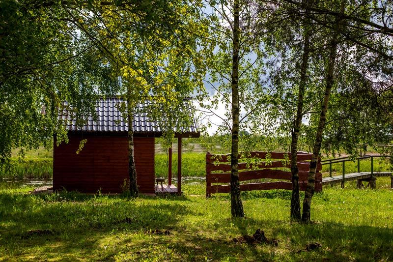Duże 213 Sauna fińska – sposób na relaks i zdrowie