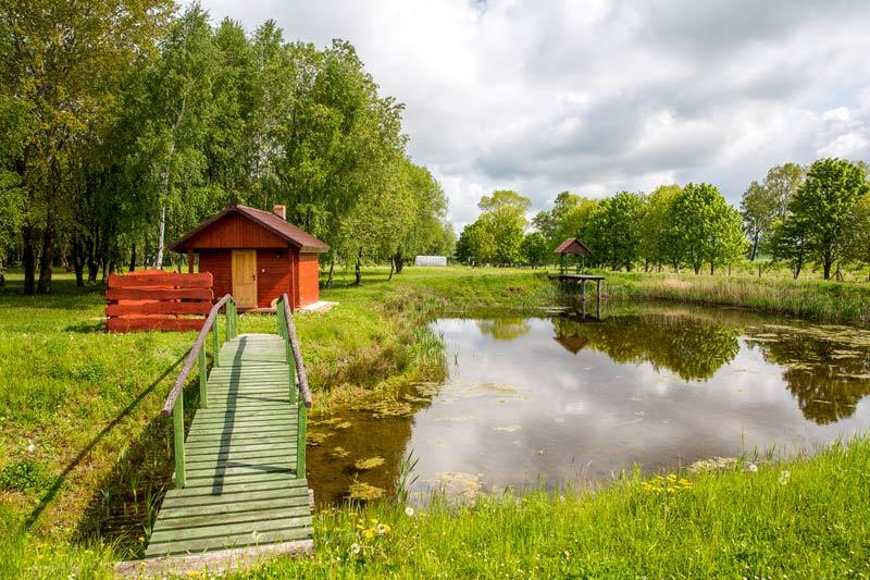 Duże 220 Ośrodek agroturystyczny Hajduki – galeria zdjęć: sauna fińska