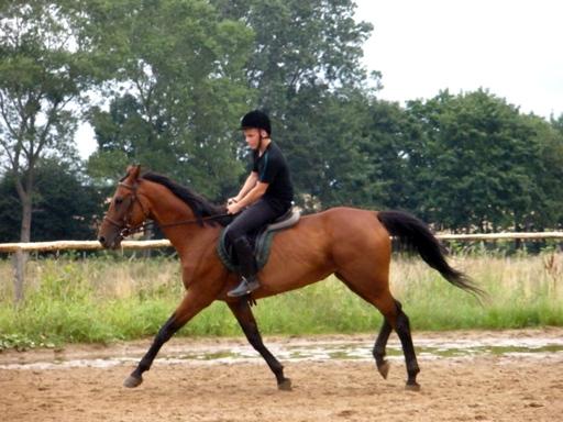 P7280605 640x480 Letni obóz jeździecki 2011