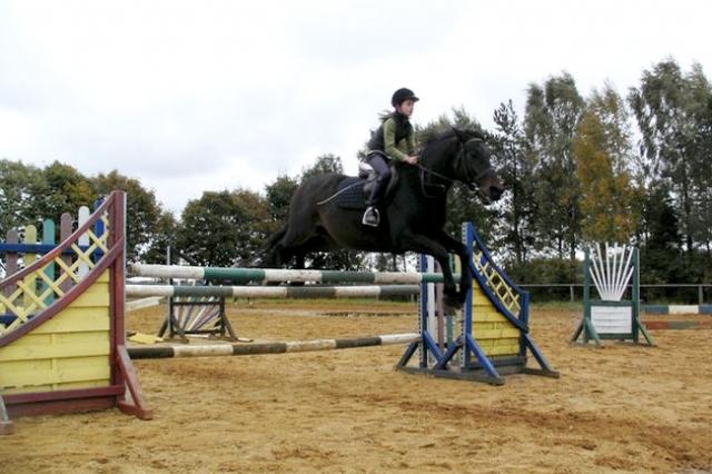 wybieg dla koni 640x480 Ośrodek agroturystyczny Hajduki – galeria zdjęć: stajnia