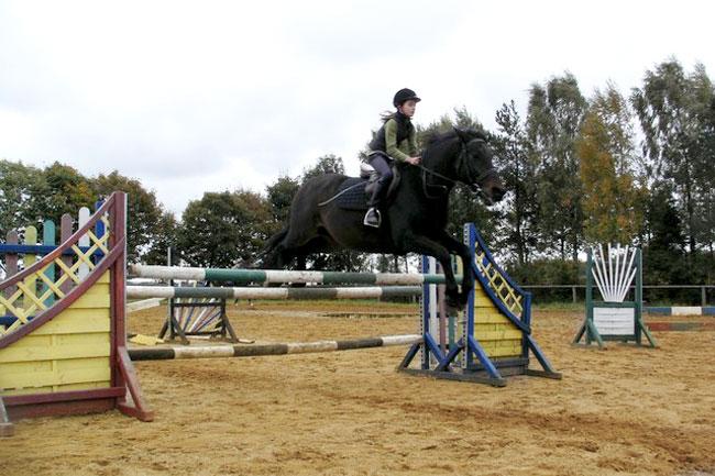 wybieg dla koni Ośrodek agroturystyczny Hajduki – galeria zdjęć: stajnia